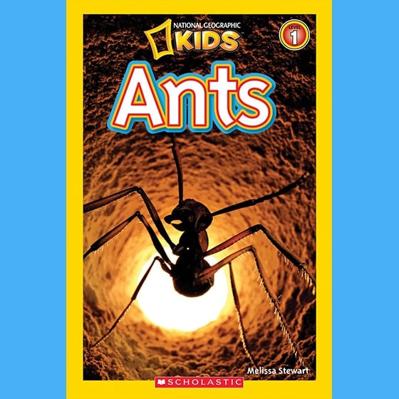 National Geographic Kids: Ants