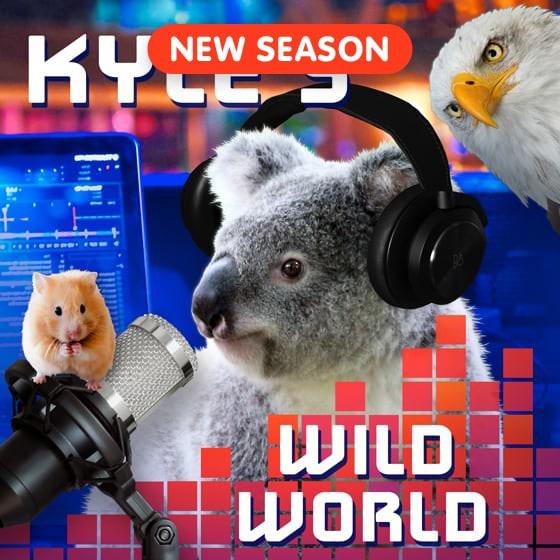 Kyle's Wild World